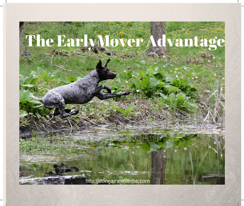 Early Mover Advantage