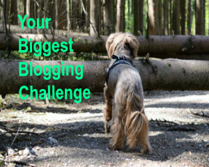 Your Biggest Blogging Challenge