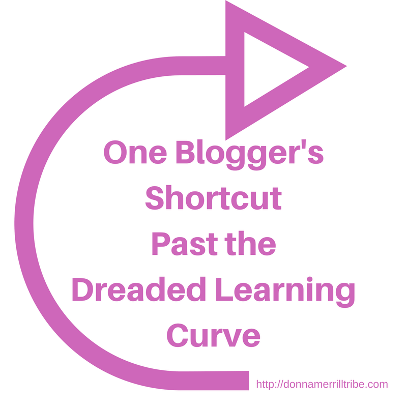 Blogger's Shortcut Past The Dreaded Learning Curve