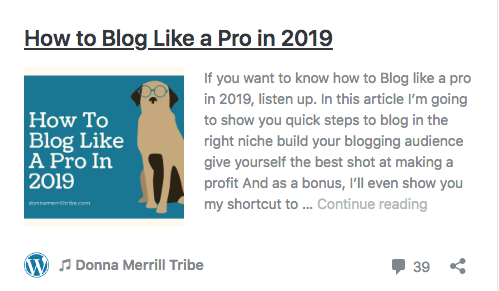 Blog like a pro in 2019