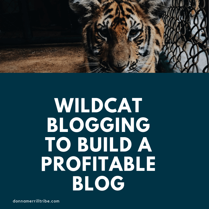 Be a Wildcat Blogging Entrepreneur to Build a Profitable Blog