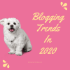 Blogging Trends In 2020