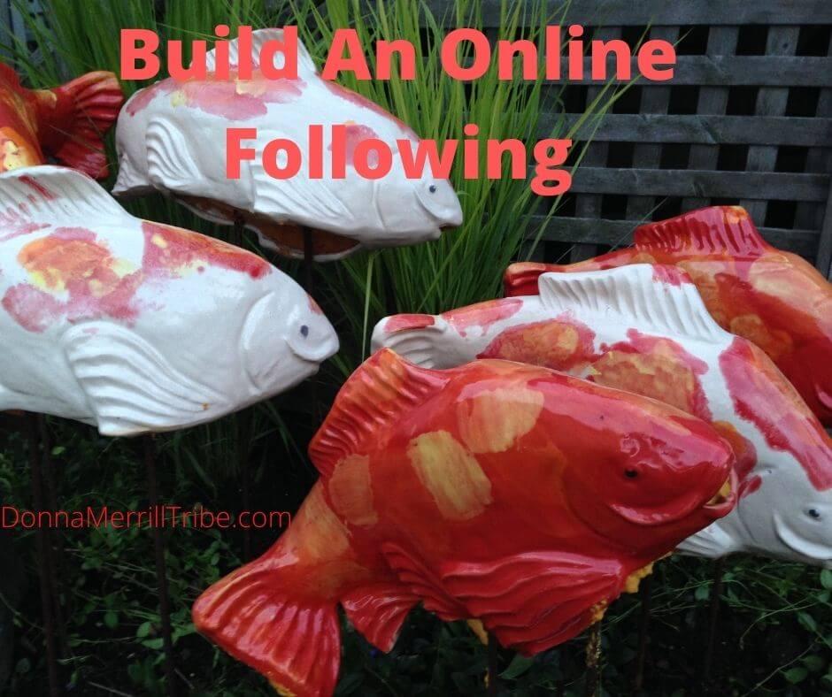 Build an Online Following