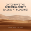 determination to succeed at blogging