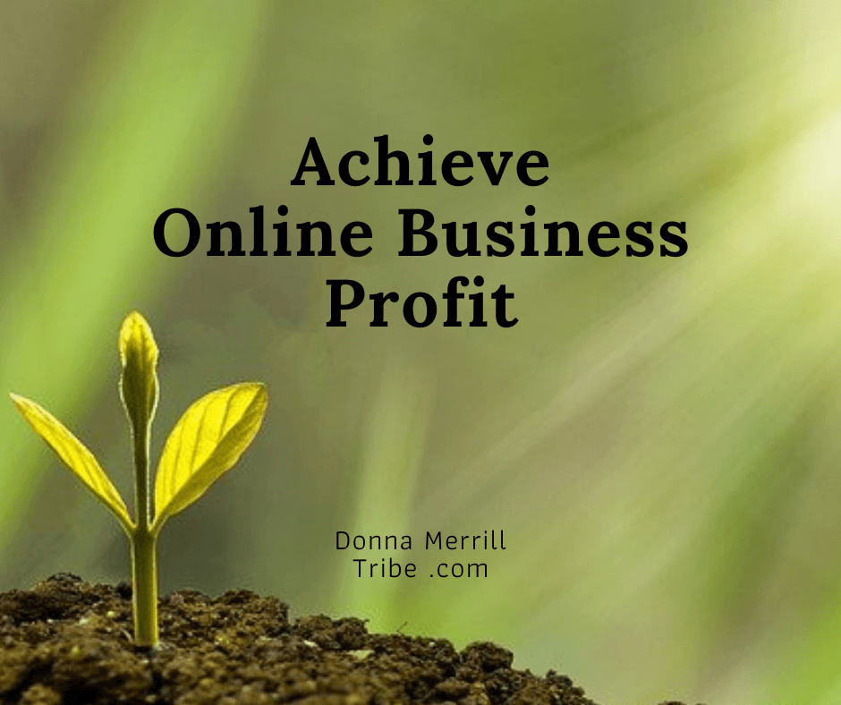 Achieve Online Business Profit