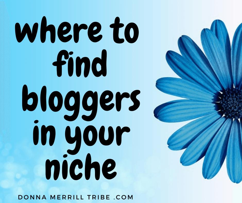 find niche bloggers