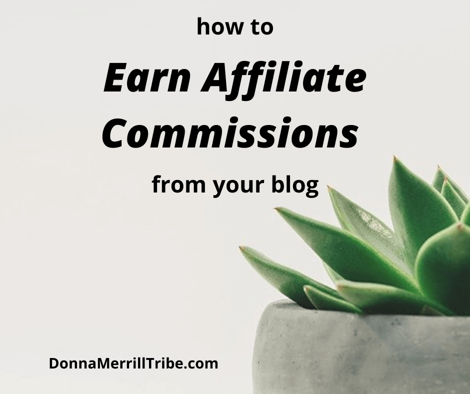 Earn Affiliate Commissions from your blog