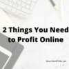 2 things you need to profit online